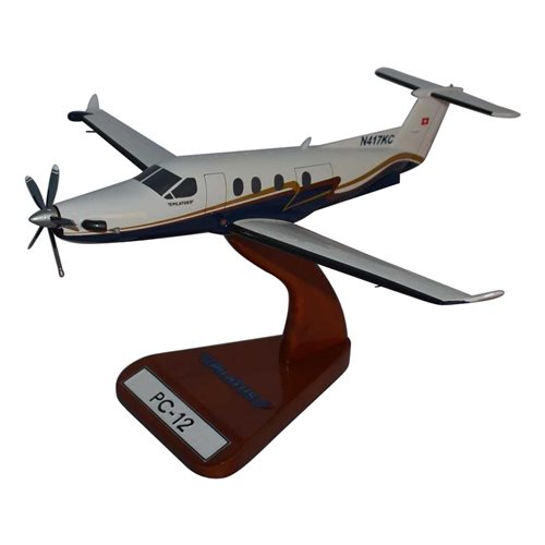 Pilatus Civilian Aircraft Models