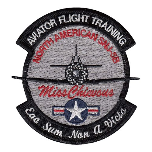Aviator Flight Training Air Show Patches Custom Patches