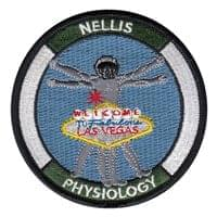 99 AMDS Patches