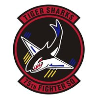 75th Fighter Squadron (75 FS) Custom Patches