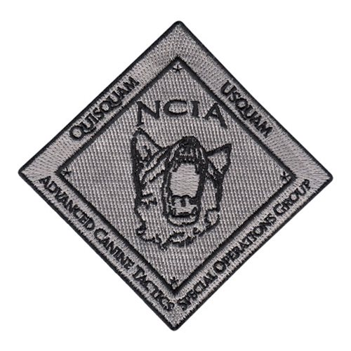 20 BS NCIA Patch