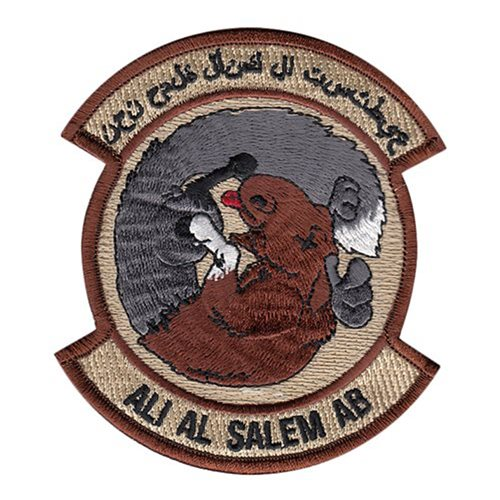 386 ELRS 386 AEW International Custom Patches