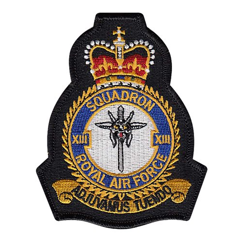 Royal Air Force International Custom Patches