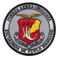 Uruguayan Air Force Patches
