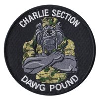 NSF Charlie Section Patches