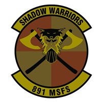 891 MSFS Patches