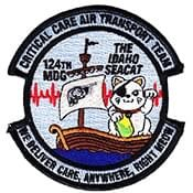 We Deliver Care, Anywhere, Right Meow - CCAT Patch