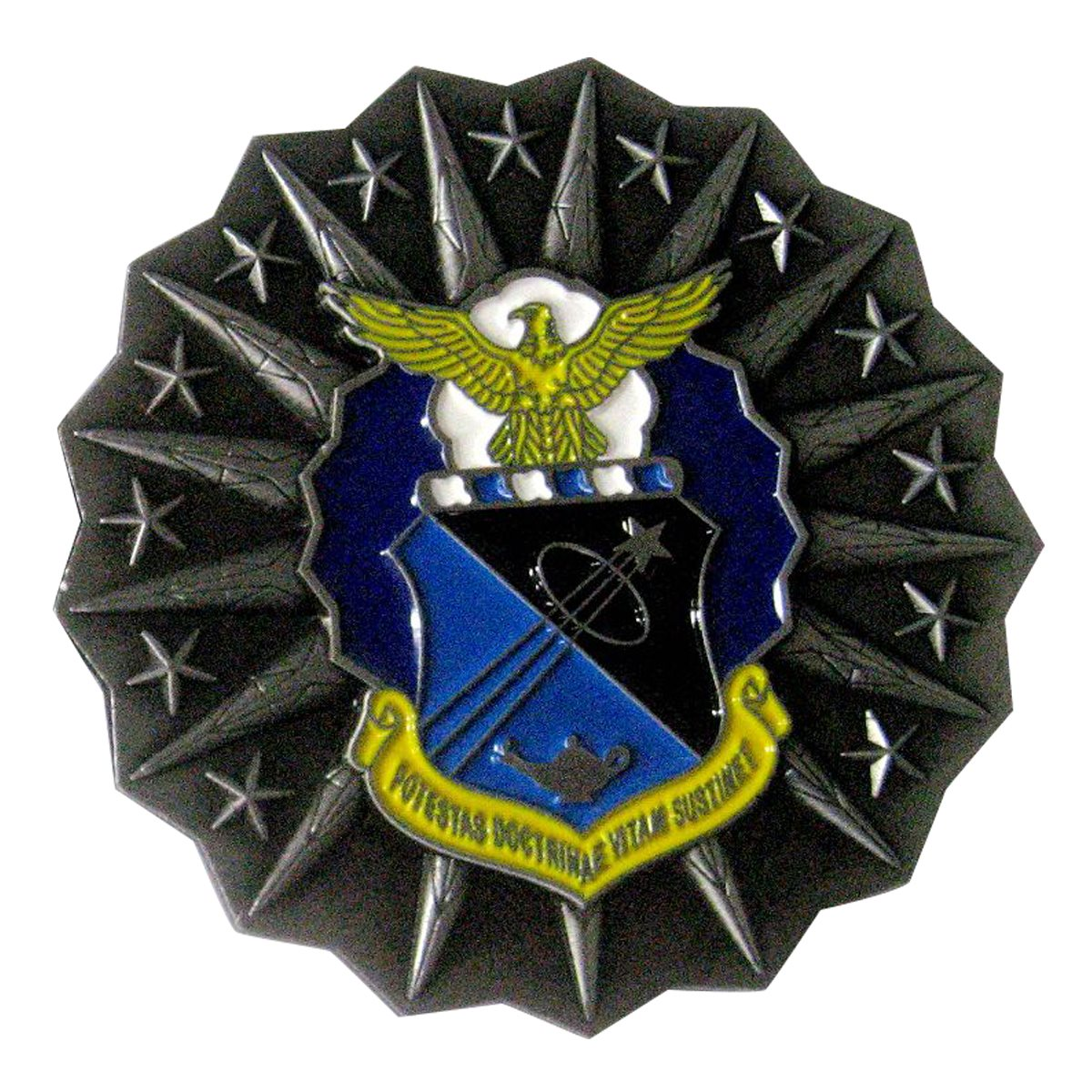 USAFA Academics Coin Back SAMPLE
