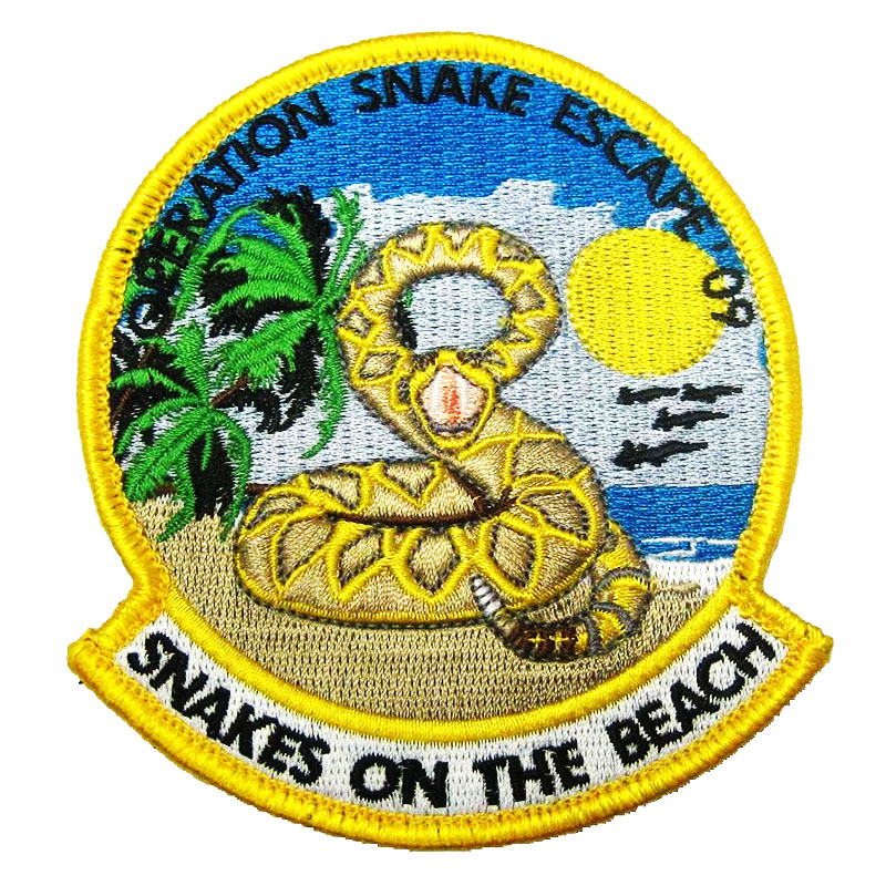 43 FS Savannah 2016 Patch - Hornets Beagles