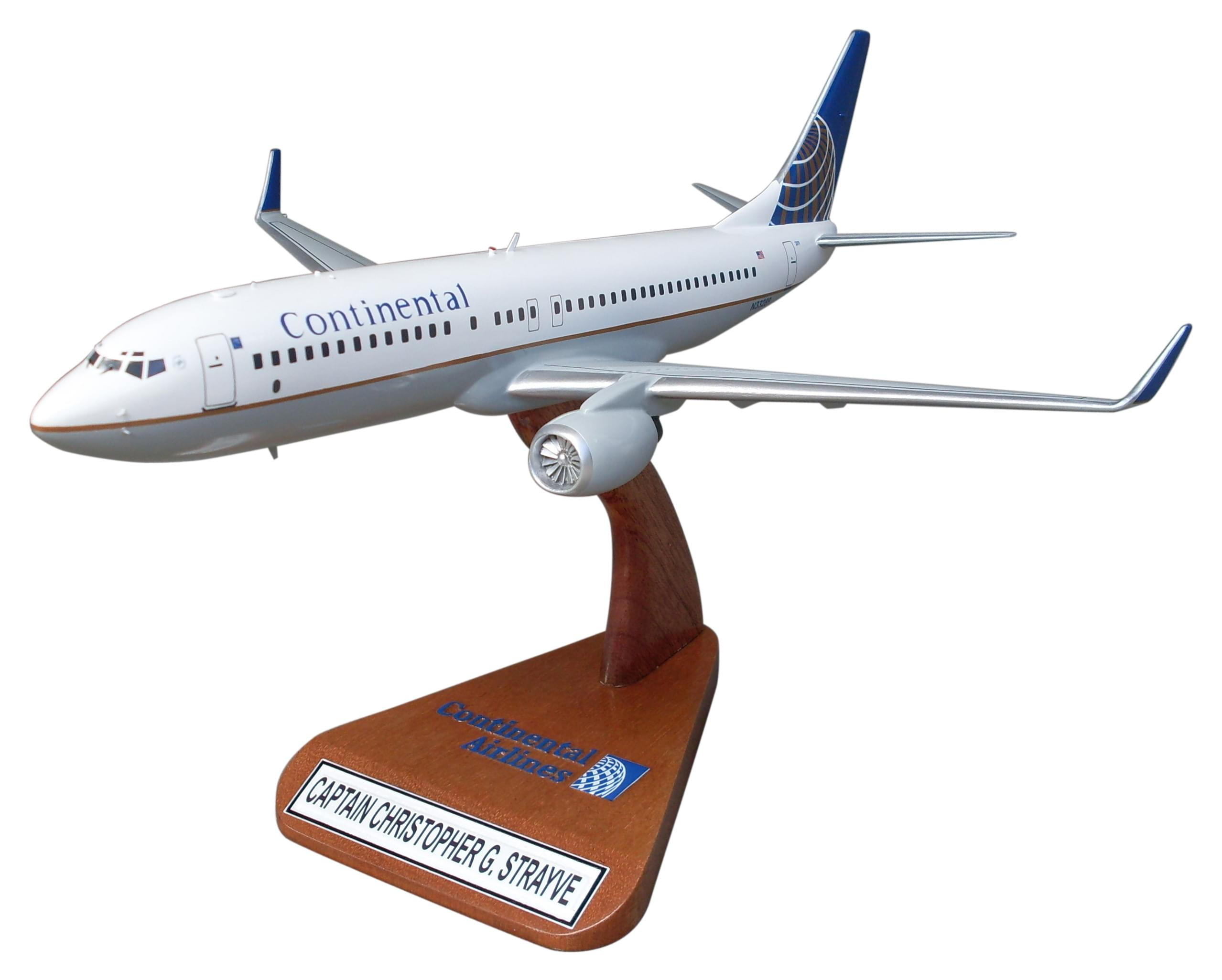 Custom Airplane Model Sample 9