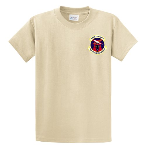 390th IS Shirts