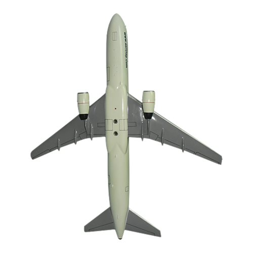 Paraguay Airlines Boeing 767 Custom Model  - View 6