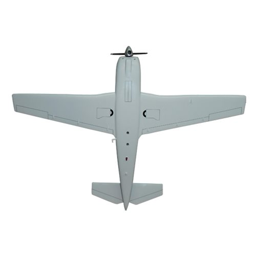 Mooney M20C Custom Airplane Model  - View 6