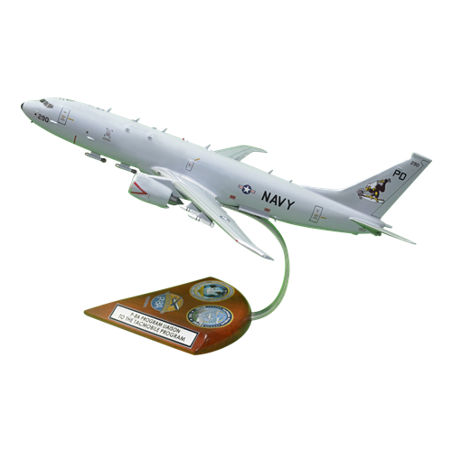 VP-9 P-8 Custom Airplane Model  - View 2