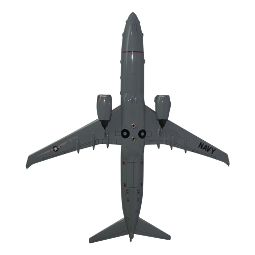 VX-20 P-8 Custom Airplane Model - View 5