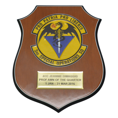 Flat Top Shield Plaque - View 6