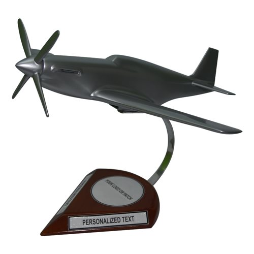 TP-51C Custom Aircraft Model  - View 2