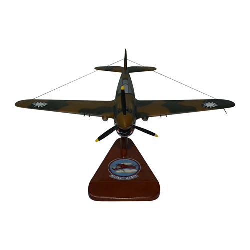 3rd Pursuit Squadron P-40 Warhawk Custom Airplane Model  - View 3