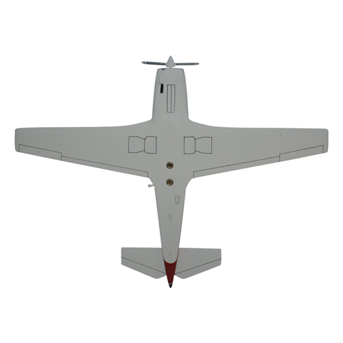 Mooney M20E Custom Airplane Model  - View 6