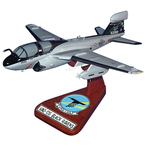 VAQ-135 EA-6B Custom Airplane Model