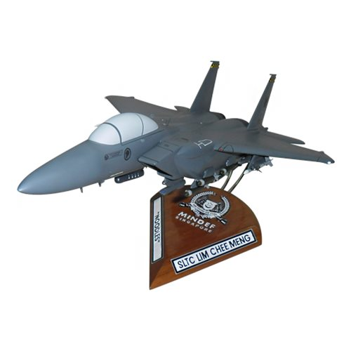 334 FS F-15E Custom Airplane Model