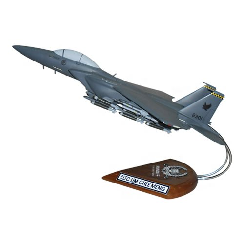 334 FS F-15E Custom Airplane Model  - View 2