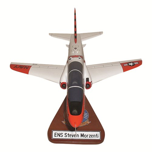 VT-9 T-45 Custom Airplane Model - View 4