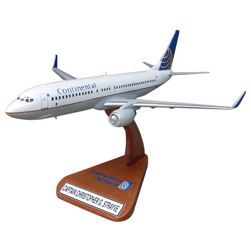 B737-800 Custom Airplane Model