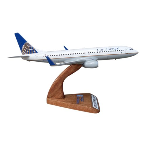 B737-800 Custom Airplane Model  - View 3
