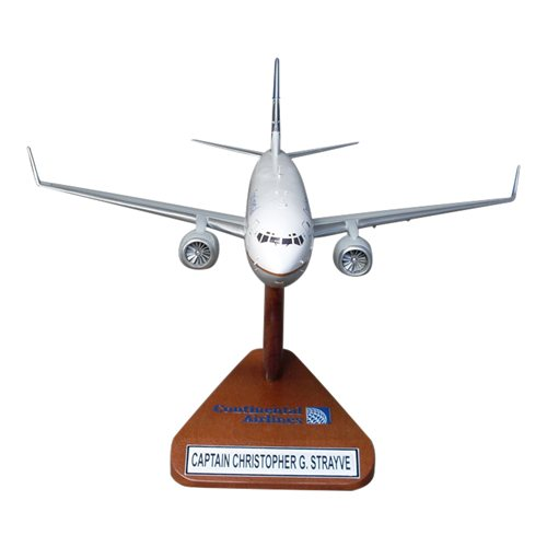 B737-800 Custom Airplane Model  - View 4