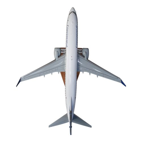 B737-800 Custom Airplane Model  - View 5