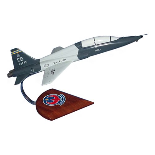43 FTS T-38C Talon Custom Airplane Model  - View 2