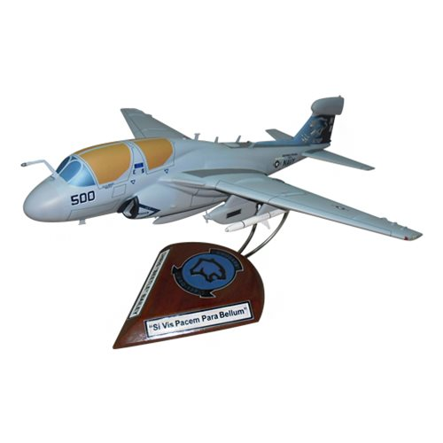 VAQ-139 EA-6B Custom Airplane Model