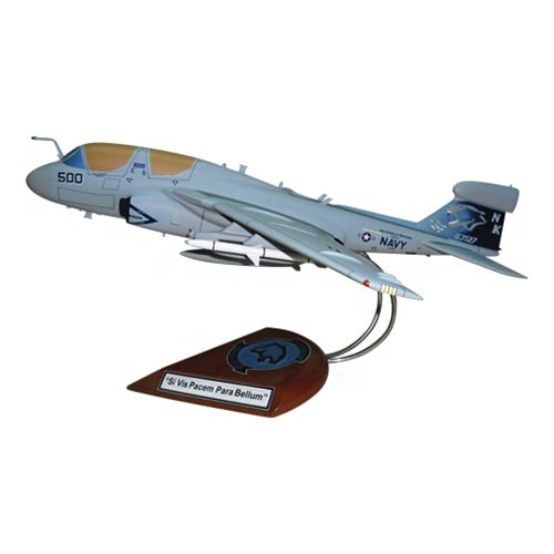 VAQ-139 EA-6B Custom Airplane Model  - View 2