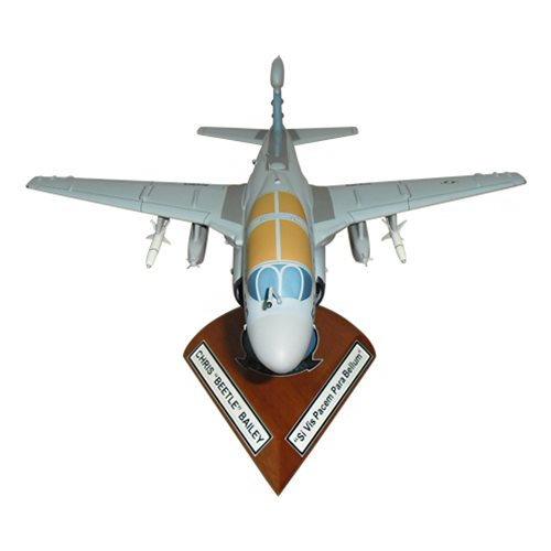 VAQ-139 EA-6B Custom Airplane Model  - View 3