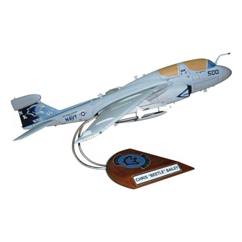 VAQ-139 EA-6B Custom Airplane Model  - View 4