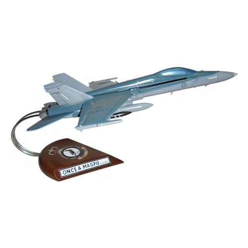 75 SQN F/A-18C Custom Airplane Model  - View 4