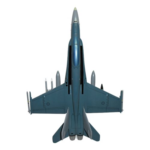 75 SQN F/A-18C Custom Airplane Model  - View 5