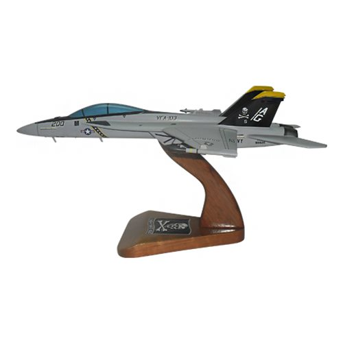 VFA-103 F/A-18E/F Custom Airplane Model  - View 2