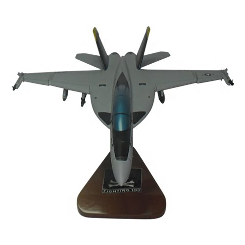 VFA-103 F/A-18E/F Custom Airplane Model  - View 3