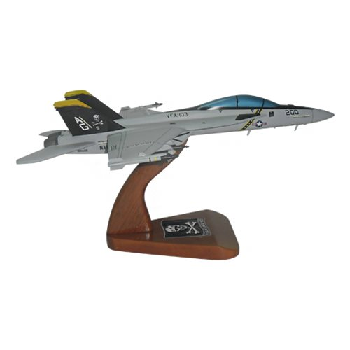 VFA-103 F/A-18E/F Custom Airplane Model  - View 4