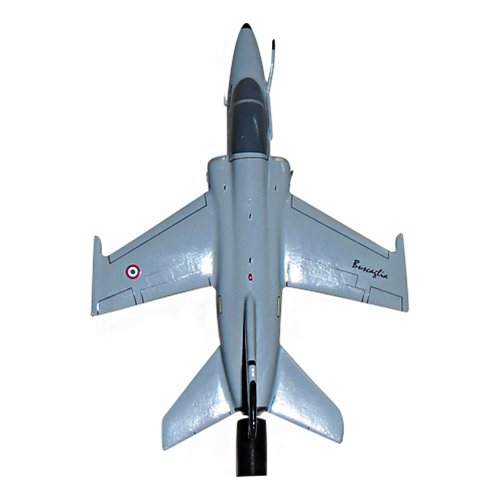 Italian Air Force AMX Custom Airplane Model Briefing Stick - View 4