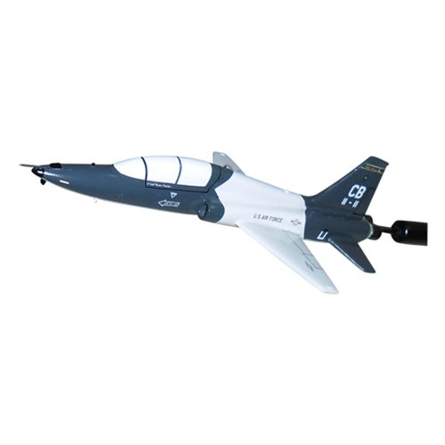 50 FTS T-38 Custom Airplane Briefing Stick