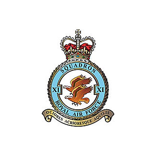 (No.11 Royal Air Force Typhoon) Airplane Briefing Stick