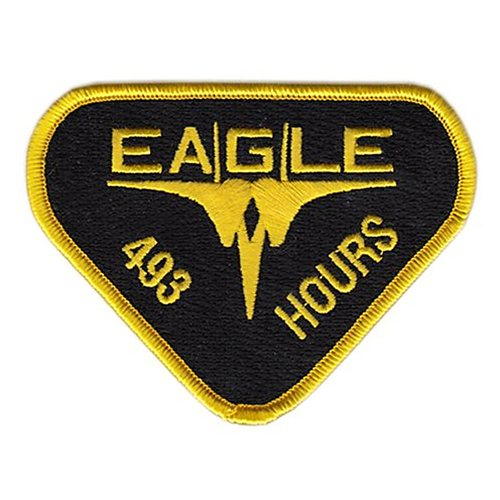 493th Figher Squadron Patch