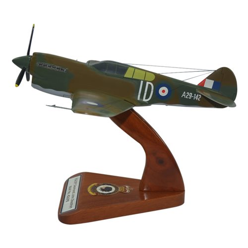 Design Your Own P-40 Custom Airplane Model  - View 2