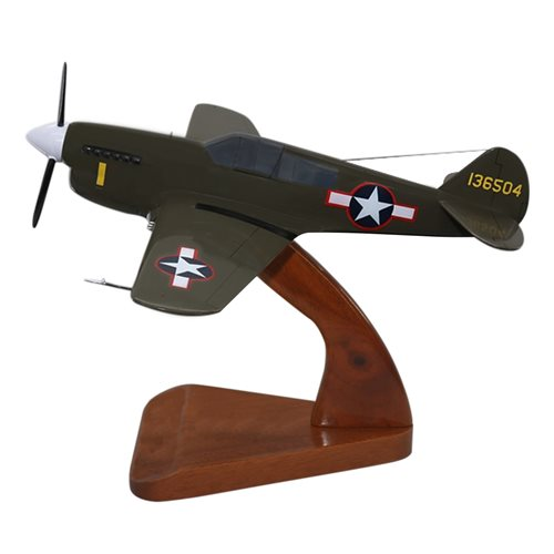 Design Your Own P-40 Custom Airplane Model  - View 3