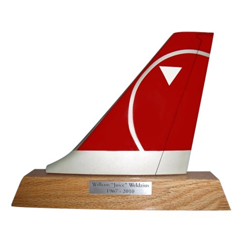 Northwest Airlines Boeing 767 Airplane Tail Flash