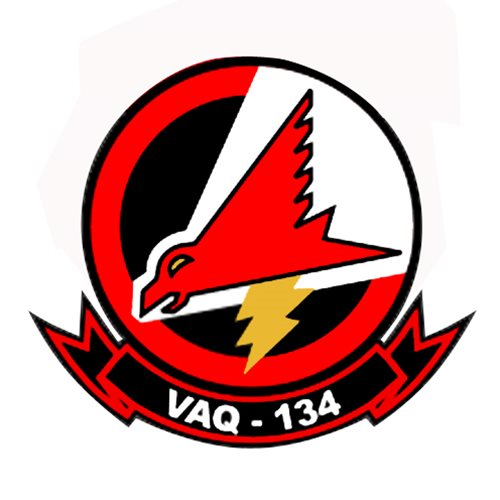 VAQ-134 EA-6B Airplane Tail Flash