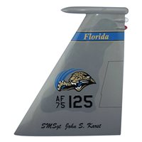 159 FS F-15 Airplane Tail Flash
